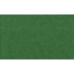 Spraytime - Chrismas Green (Ref. 2800G67) (Par 10 cm - Quantité min. 3)