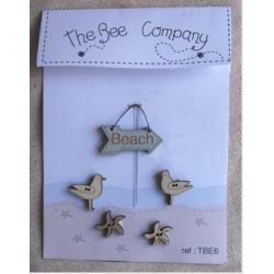 Oiseaux et étoiles de mer